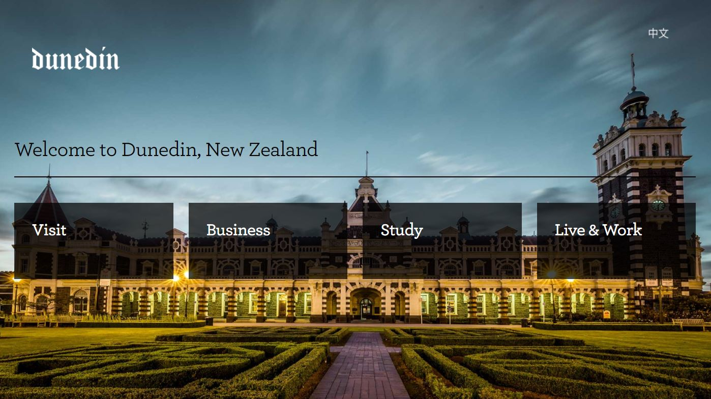 Dunedin NZ Website Preview